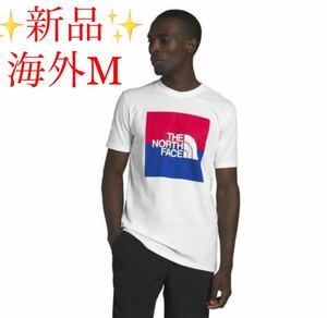 ★新品★ The North Face USA ボックス ロゴ Tシャツ 半袖 ノースフェイス ハーフドームロゴ 海外限定 レア