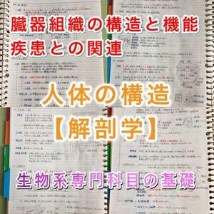 看護師、准看護師国家試験、看護学科定期試験対策シリーズ【解剖学】まとめノート