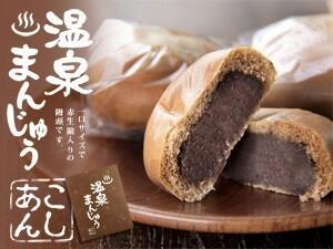 温泉まんじゅう(こしあん)12個入り 昔ながらの美味しい温泉饅頭です。(お土産 和菓子 ギフト スイーツ おやつ お茶請け 漉し餡)