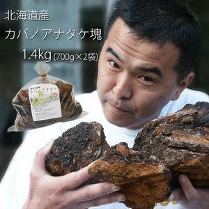 お得用 カバノアナタケ茶塊(原体)1.4kg(700g×2袋セット)北海道産チャーガ茶100%(かばのあなたけ茶)樺孔茸茶 チャーガティ【送料無料】