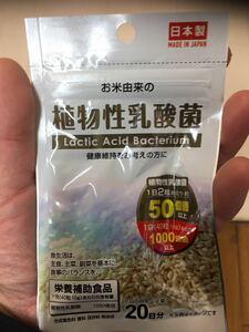 植物性乳酸菌 日本製タブレットサプリメント