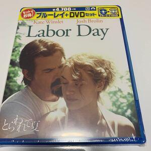 新品未開封 とらわれて夏 ブルーレイ+DVDセット(2枚組) Blu-ray日本語字幕 ケイトウィンスレット ガトリングリフィス トビーマグワイア