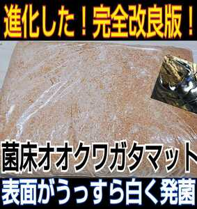 【改良版】活きた菌糸マットを発送!甘い良い香りがします☆ひらたけ菌床粉砕クワガタマット 瓶に詰めだけでOK!オオクワ、虹色、ヒラタに