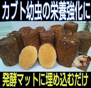 カブト幼虫の栄養強化に!椎茸廃菌床ブロック☆発酵マットに埋め込むとモリモリ食べます!クワガタ幼虫の餌、産卵木の代わりにもOK!