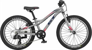 Free Shipping / 2021 / GT / Ston Purp Lime 20/20 / 2-3 Days / Adaptive Height 122-135 CM / Silver / Bicycle Life Division
