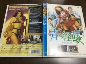 ◆青い経験 エロチカ大学 DVD 国内正規品 エドウィジュ・フェネシュ イタリア映画 1978年 即決