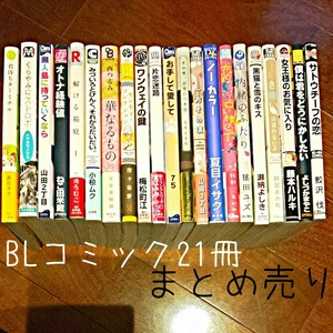BLコミック21冊まとめ売り 漫画 ボーイズラブ