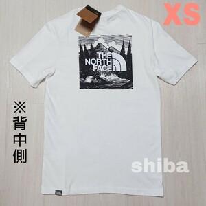 THE NORTH FACE ノースフェイス tシャツ 半袖 ホワイト 白 レッドボックス セレブレーション  海外XSサイズ
