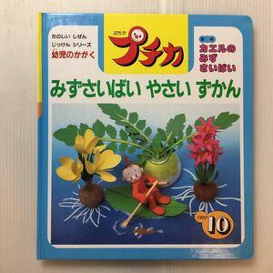zaa-184♪みずさいばい やさいずかん 学研プチカ10号[教材]カエルのみずさいばい たのしいしぜんじっけんシリーズ1997年 科学図鑑雑誌