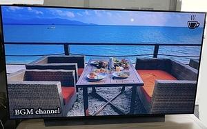 展示品 2021年 保証有 LG 65型 4Kチューナー内蔵 有機ELテレビ OLED65CXPJA