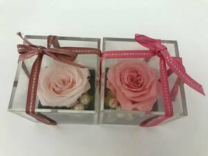プリザーブドフラワー ミニ 薔薇 置物 2点セット ばら バラ パール
