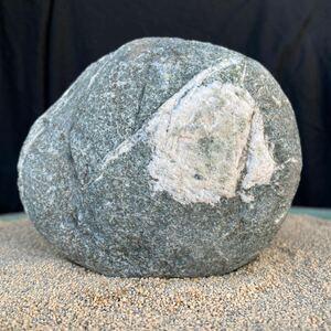 水石 紋様石「モリアオガエルの卵」安倍川石