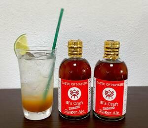 楽's Craft KARATO Ginger Ale 300ml×2本 クラフト ジンジャーエール 自家製 シロップ カクテル ジンジャーハイ 無添加