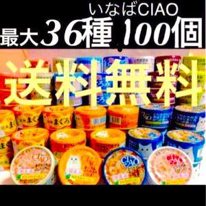 Gj缶詰パウチ 猫のご飯まとめ売りかつお まぐろ とりささみ かにかま チャオちゅーるで人気いなばチャオCIAO最大36種100個