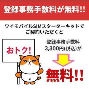 【事務手数料が3,300円無料】 Ymobile SIMスターターキット