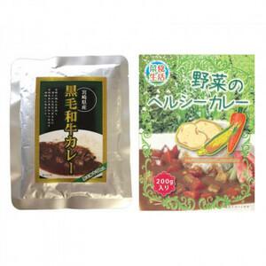 ばあちゃん本舗 宮崎県産黒毛和牛カレー 160g×8個&野菜のヘルシーカレー 200g×7個(a-1681218)