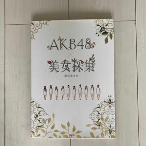 AKB48美女採集 清川あさみ 講談社