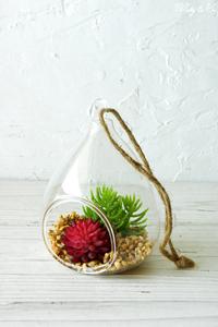 フェイクグリーン Terrarium Drop S ( テラリウム 壁掛け 多肉植物 吊り下げ 人工観葉植物 おしゃれ 壁飾り ハンギング サボテン ) HT gr75