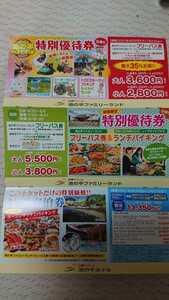 送料 63円~ 白樺リゾート 池の平ファミリーランド 特別優待券 最大35%お得