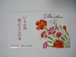 ◇なでしこ 撫子 花の種 東京優芳園◇