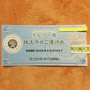 エコナック テルマー湯 株主優待券1枚 2022年6月30日  ミニレター対応63円  新宿歌舞伎町  エコナックホールディングス