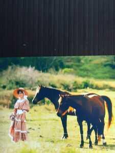 岡田有希子写真 一枚 L版 14