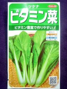 ★種子★処分★ ビタミン菜 ツケナ V サカタのタネ 21.05 ◎つくりやすい家庭菜園向きのツケナです♪ (ゆうパケット便可能)