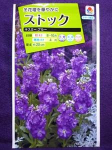 ★種子★ ストック キスミー ブルー タキイ種苗 22.04 ◎淡青色の花からは、良い香りがします♪ (ゆうパケット便可能)