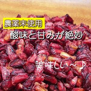 【BI】 ドライフルーツ ザクロ 140g ざくろ 無添加 砂糖不使用 ノンシュガー ザクロシード 種 シード