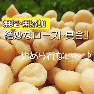 【CT】 ナッツ マカダミアナッツ 130g 塩分不使用 無添加 砂糖不使用 無塩 塩不使用 食塩未使用 食塩不使用