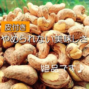 【CT】 ナッツ 皮付きカシューナッツ 80g ロースト おつまみ 食塩 カシューナッツ 皮付き