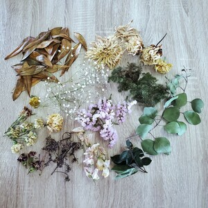 ドライフラワー プリザーブドフラワー ハーバリウム 花材