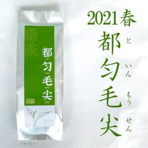 2021春 都匀毛尖 といんもうせん 緑茶