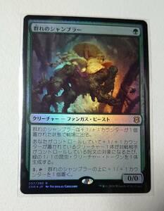 Foil 群れのシャンブラー/Swarm Shambler [ZNR] ゼンディカーの夜明け MTG 日本語 207 Y1