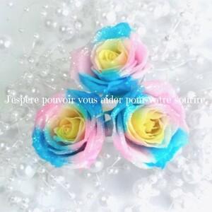 加工花材* プリンセス ローズ プリザーブドフラワー 花材