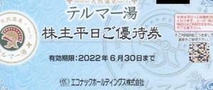 テルマー湯 平日優待券 1枚  エコナック 株主優待