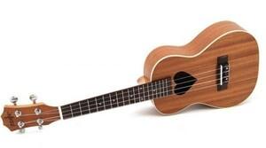 23 インチの コンサート ウクレレ弦 ハワイ ミニギター アコースティック ギター ウクレレ パターンギター 楽器 本体
