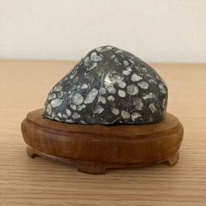 ■水石 ■鑑賞石 ■盆石 ■D-2