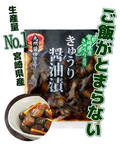 【漬物】宮崎県産 きゅうり醤油漬け 4袋 【食品】