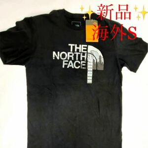 ★新品★ the north face ビッグロゴ 半袖 Tシャツ 人気 黒 S ノースフェイス ハーフドーム グラフィック レア