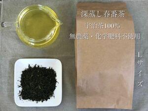 「新茶」深蒸し春番茶Lサイズ 宇治茶100% 無農薬 化学肥料不使用 2021年産