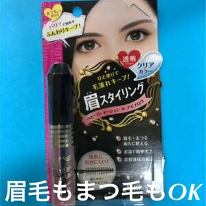 【ヘビーローテーション】 眉 まつ毛OK!!カラーリングアイブロウ C クリアカラー 透明