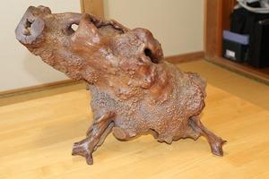 天然木  猪