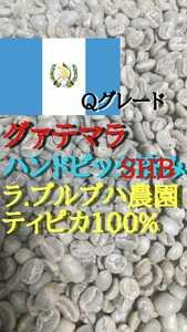 グァテマラSHBディピカ100%ラ・ブルブハ農園コーヒー生豆200g!簡単なハンドピック済み!