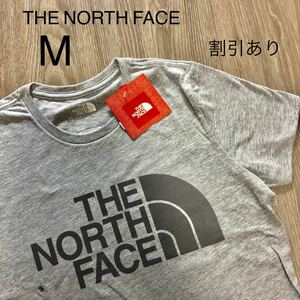 THE NORTH FACE ハーフドーム ロゴTシャツ ビッグロゴ アメリカ
