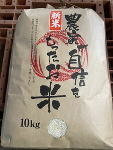 令和2年産 山形県産 コシヒカリ 白米 10キロ