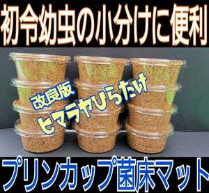 改良版!プリンカップ入り12セット ひらたけ菌床粉砕マット☆割出し直後の初令幼虫の個別飼育に便利です!オオクワ、ニジイロ、ヒラタに!