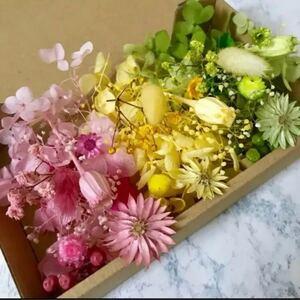 3色チーゼルフラワー*花材詰め合わせ