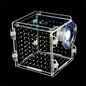 魚 水槽内隔離ボックス☆アクアリウム 淡水 海水 汽水 ペット 飼育 病気 保護 治療 稚魚 繁殖 孵化
