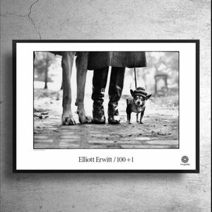 スウェーデン 限定!アート写真家『エリオット・アーウィット』希少ポスター